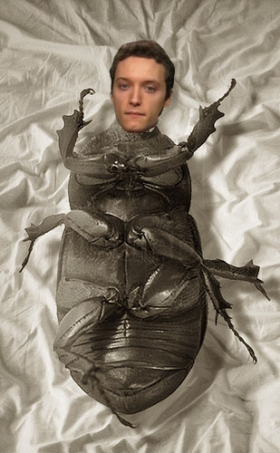 gregor samsa copy